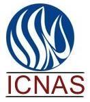 International College for New Age Studies - [ICNAS], Calicut