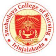 Snehodaya College of Nursing Vallakkunnu, Thrissur