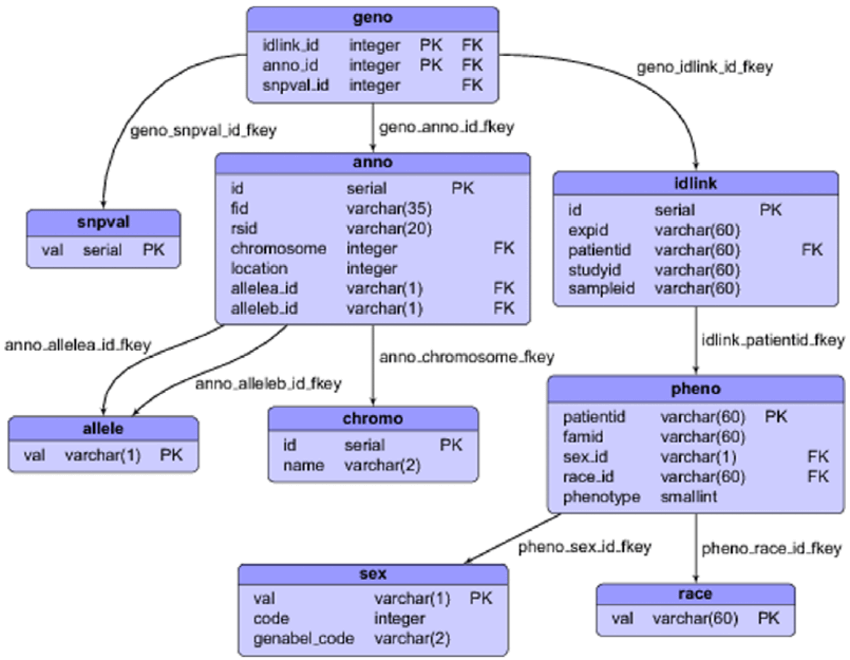 Database schema(All type of projects)